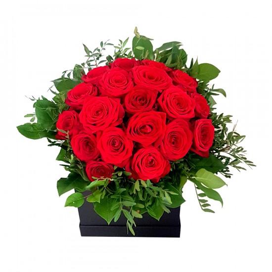 HD Red Flower