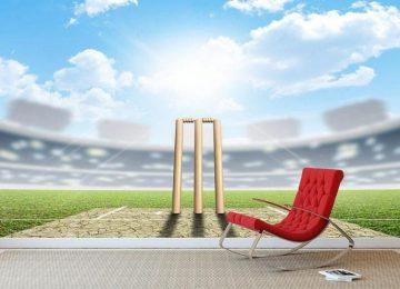 Nice Cricket Wallpaper