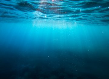 Free Underwater Image