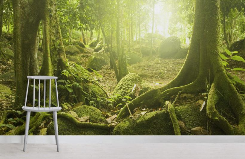 Green Jungle Wallpaper