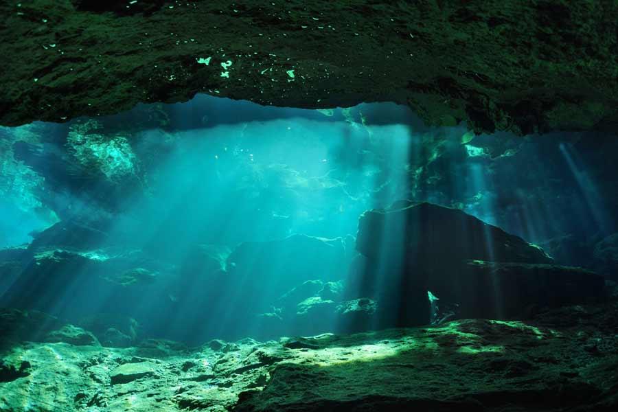 Top Underwater Image