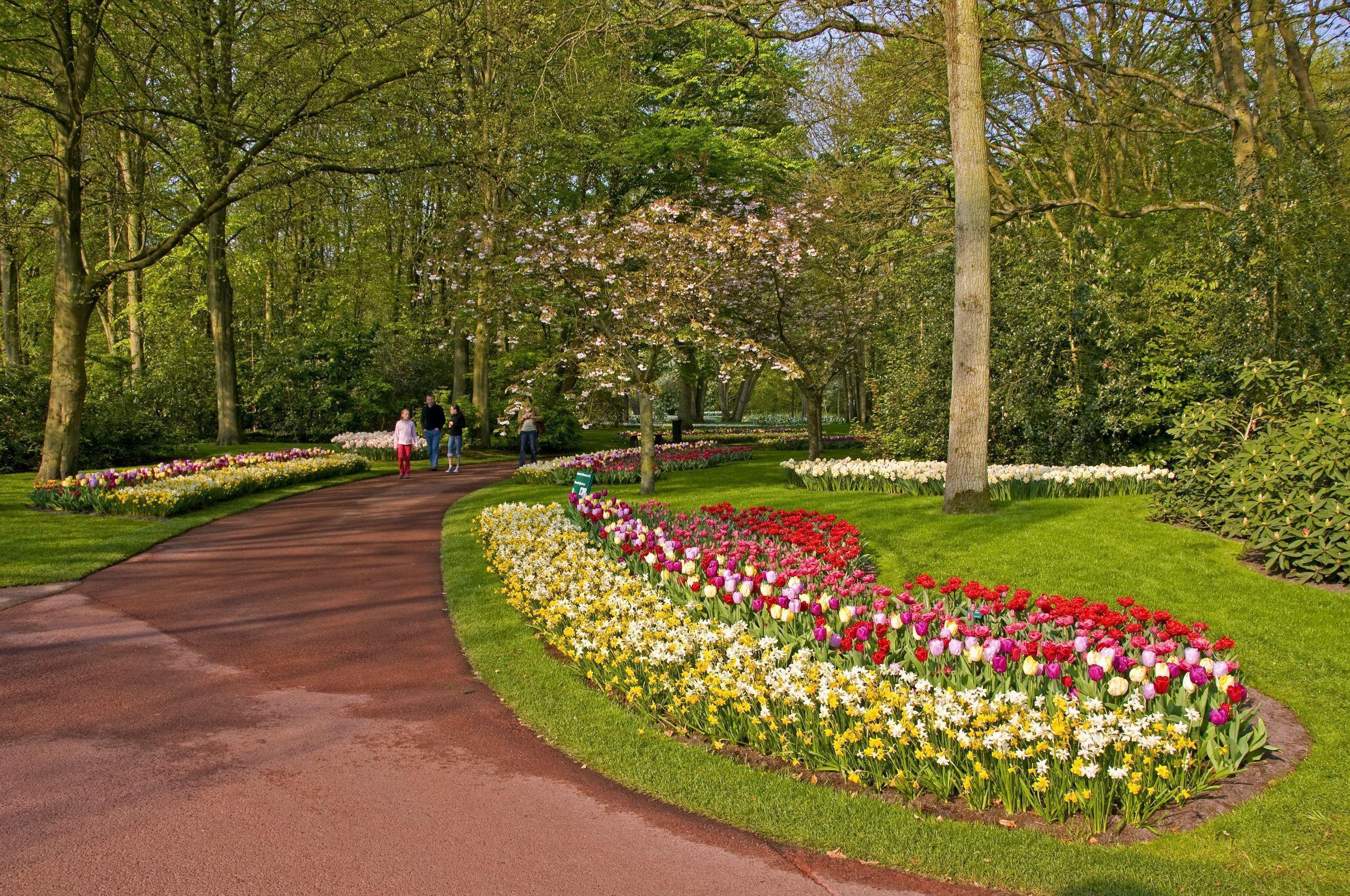 Widescreen Park Wallpaper