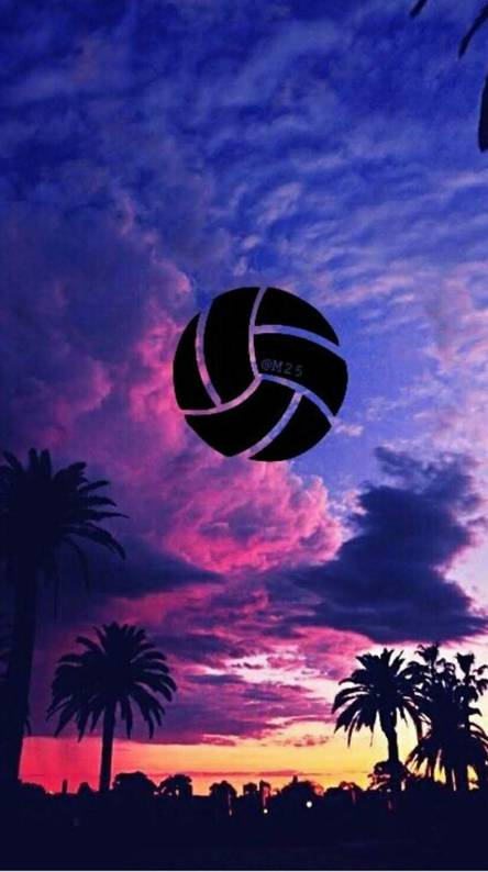 HD Volleyball Wallpaper