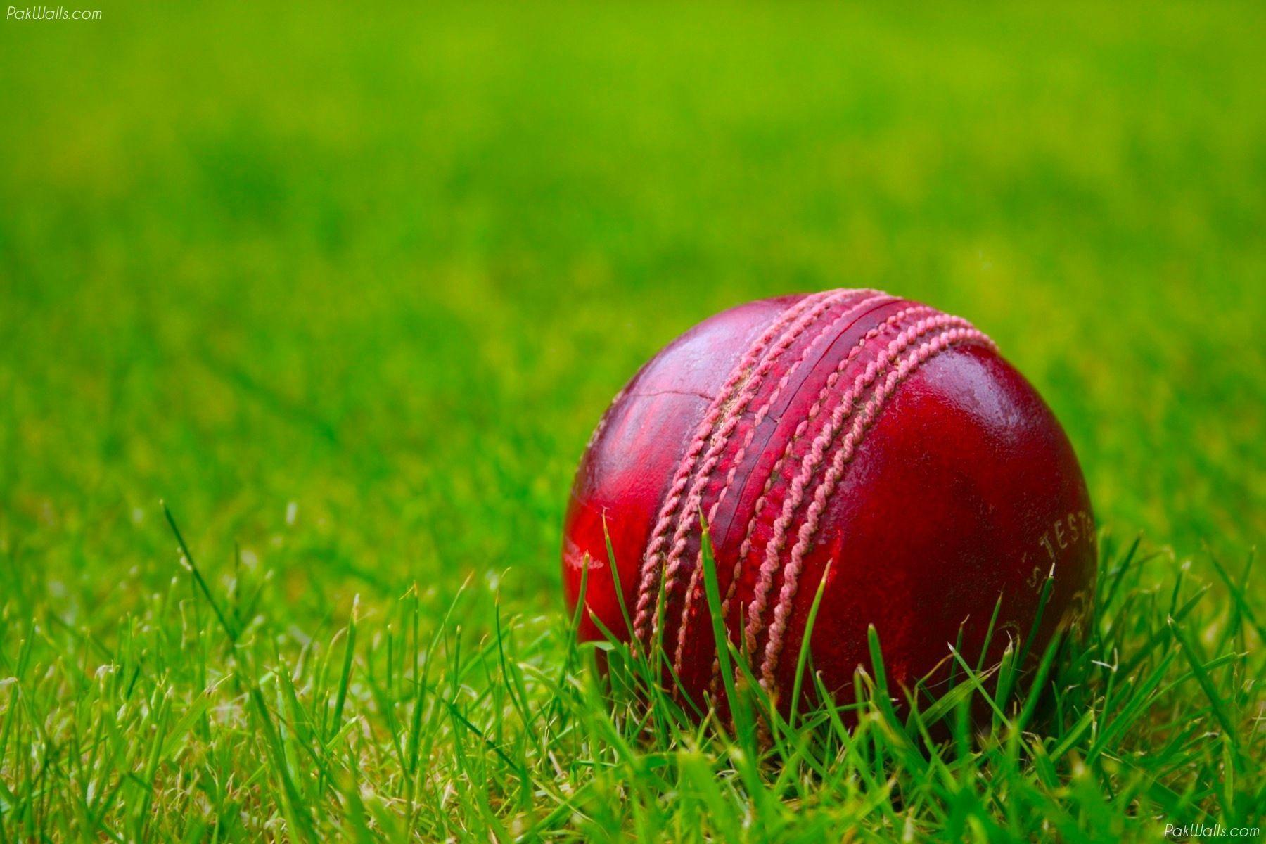 Red Ball Cricket Wallpaper