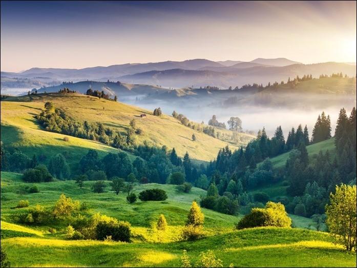 Widescreen HD Nature Wallpaper