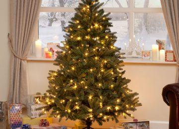 Nice Christmas Tree
