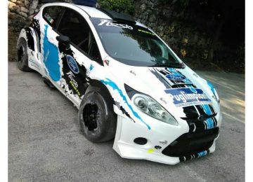 Amazing Ford Fiesta WRC