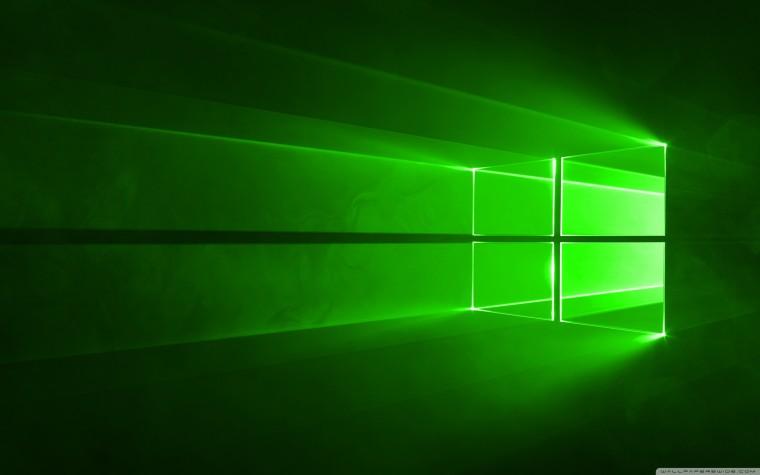 Window Green Wallpaper