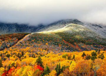 Amazing Fall Foliage