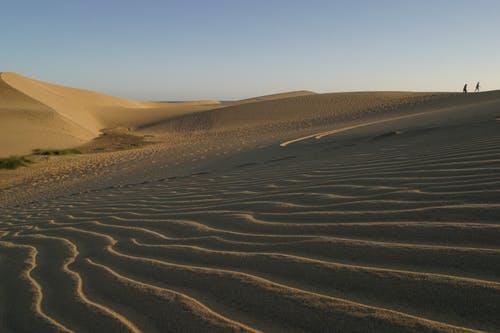 Cool Desert Wallpaper
