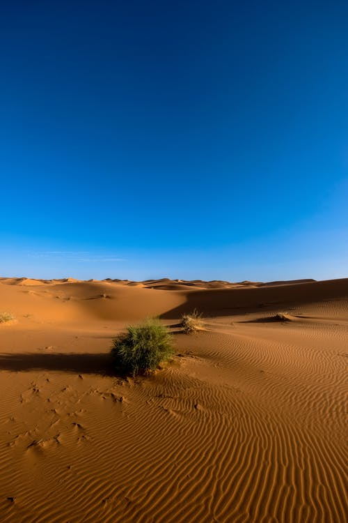 Natural Desert Wallpaper