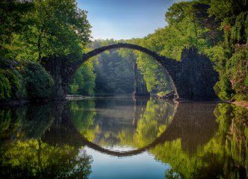 Bridge Nature Picture
