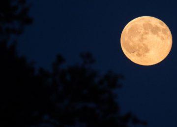 Top Full Moon